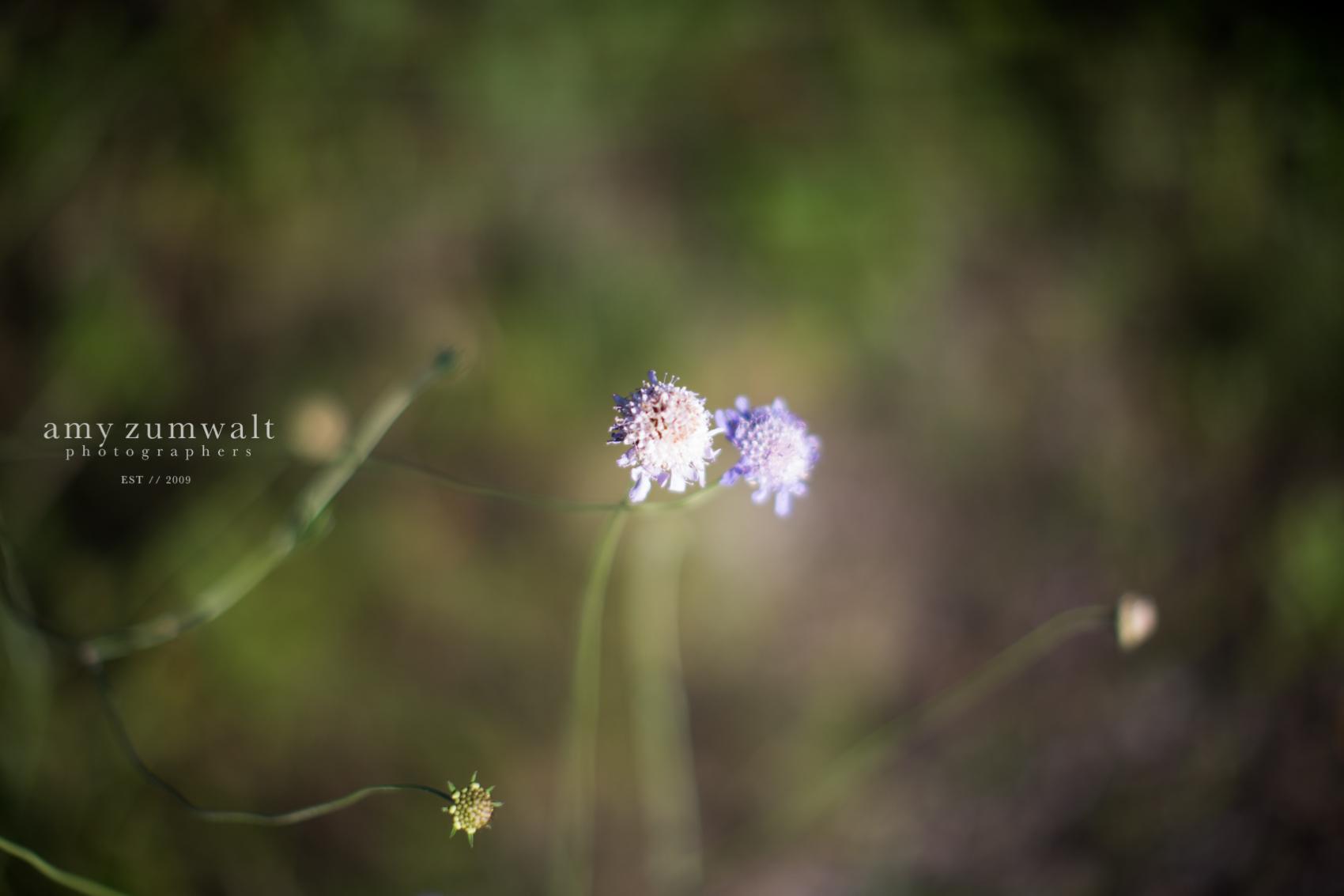 emily-yates-bridal-blog-1
