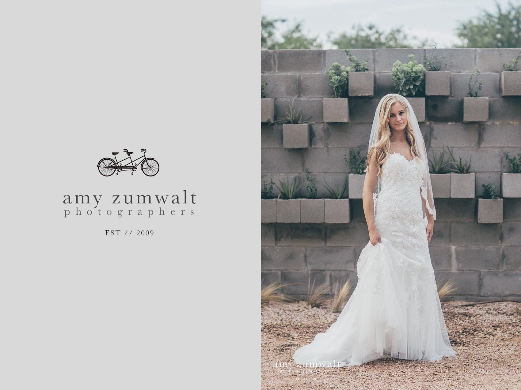 bridal-session-brik-venue-photography-14-copy